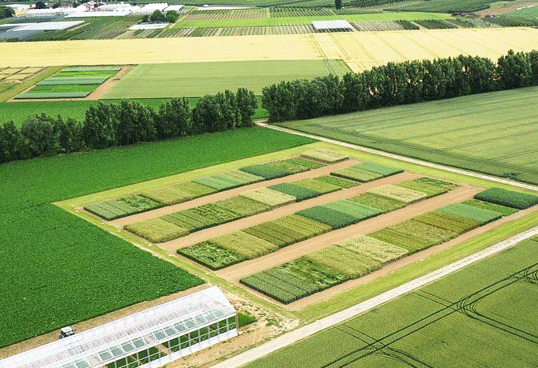 GrowerIQ Develops World's First Biotic Sensor for Crop Loss Prevention