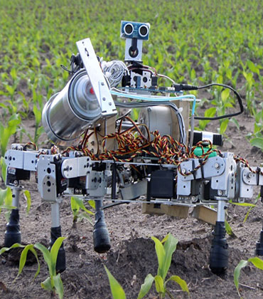 Robotics in Agriculture: What are the Prospects?