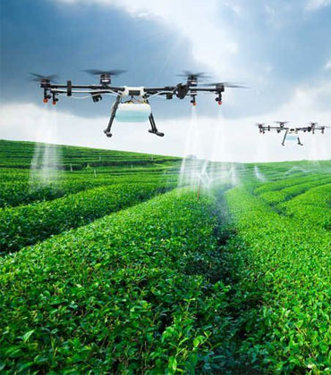 Top 9 Agtech Solutions Changing the Future of Agriculture Sector