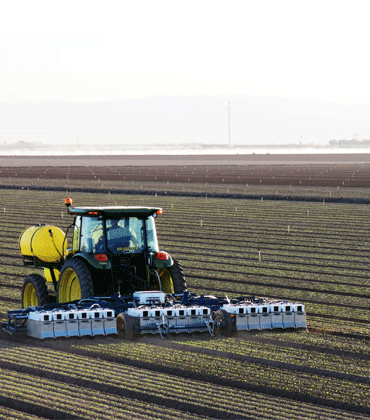 The Introduction of AI and Robotics in High-Tech Farming