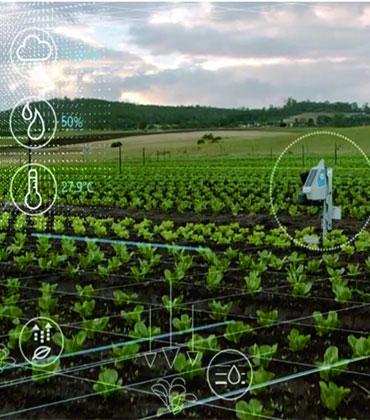 3 Ways Machine Vision is Advantageous to Agriculture