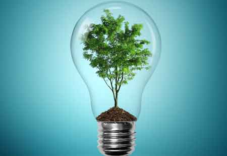 Why Enterprises Favor Going Green in Business?