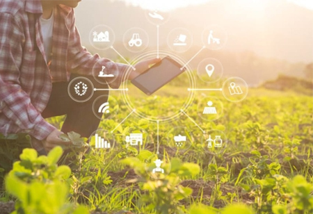 How Digital Transformation is Helping Agriculture