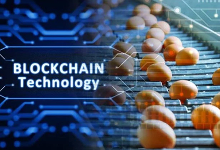 How Blockchain is Contributing to Sustainability Tech?