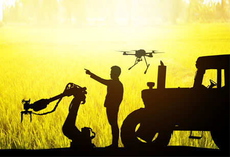 AI and Automation in Smart Farming