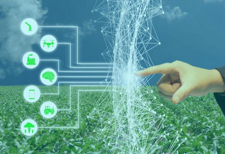 How Tech-driven Pricing Networks Enhance Transparency in Agro Markets