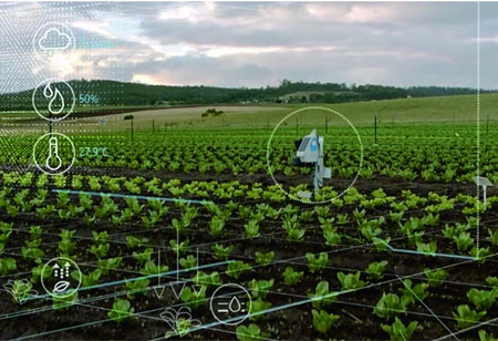 3 Ways Machine Vision is Advantageous to Agriculture