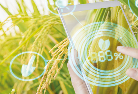 How AgTech Is Enhancing The Agriculture Sector