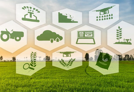 Toward Smart Farming Practices