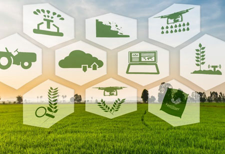 The Adoption of Precision Agriculture Technologies
