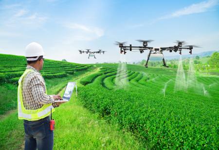 How IoT Sensors Will Benefit the Farmers